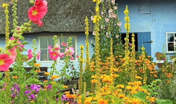 Das wär´s! Natur, viele Blumen, Gemüsebeete ;-) (Foto: pixabay.com / Kerstin Riemer)