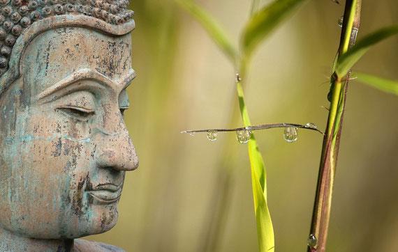 Wissenschaftlich nachgewiesen: Meditation ruft positive Effekte hervor... (Foto: pixabay.com)