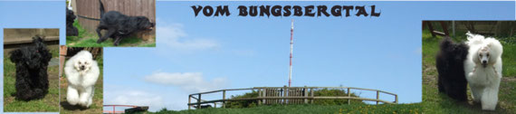 12 Vom Bungsbergtal