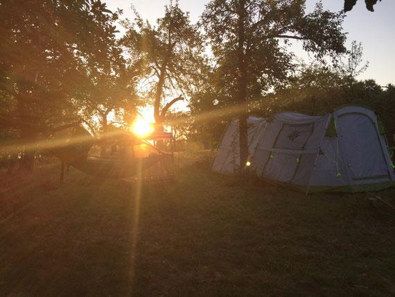 Sonnenaufgang auf Streuobstwiese nach Übernachtung unter freiem Himmel in der Hängematte