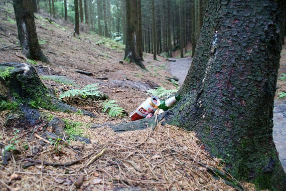 Im Nationalpark Sächsische Schweiz! Nur 30m weiter war ein Abfalleimer!