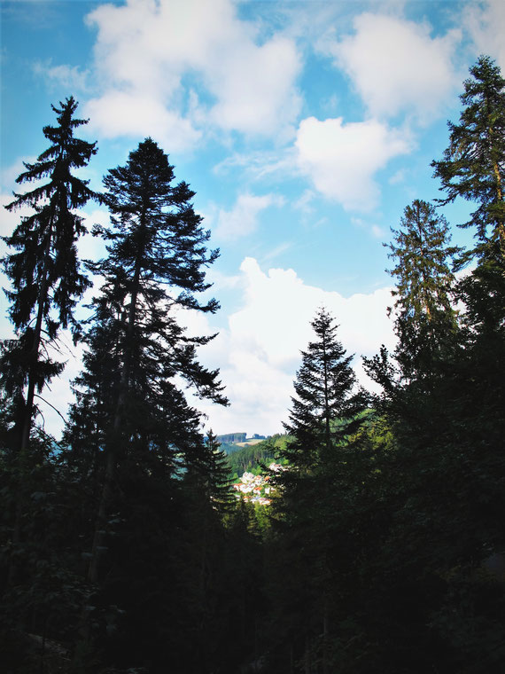 triberg allemagne bigousteppes forêt