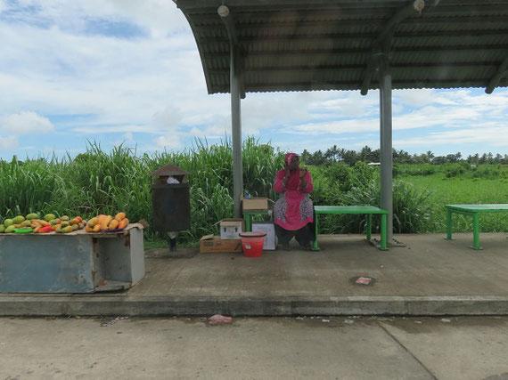 道端で果物を売るインド系フィジー人女性