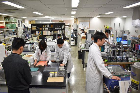 科研費の研究では有機物が入ったスラリーを扱っていますが、研究室ではセラミックスや電池電極など、様々なスラリーを扱っています。一番手前は電池の電極を作っているところです。