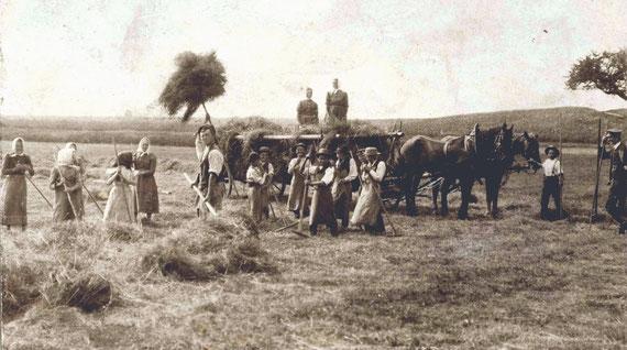 Getreide-Einfahrt; kurze Rast beim Beladen des Pferdewagens mit den getrockneten Garben