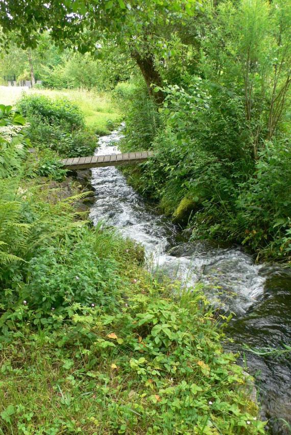 Oberlauf Bach mit Brücke