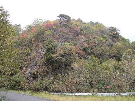 折場手前の山も、赤や黄色に染まり始めています