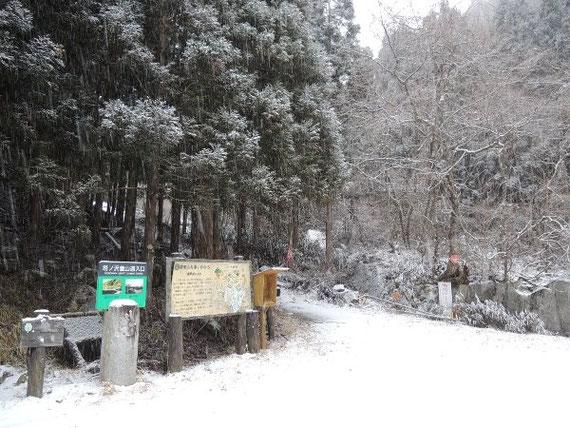 この雪が積もると、しばらくは寝釈迦入口までの車の乗り入れは難しくなりそうです。