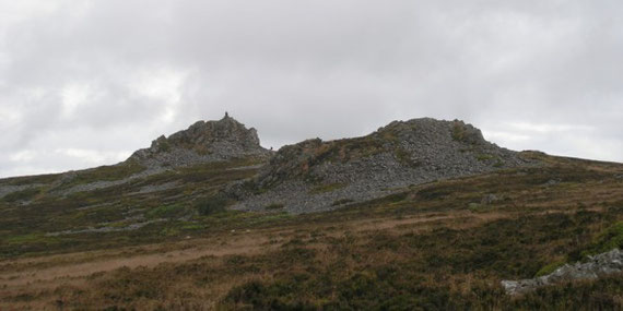Stiperstones. Manstone Rock, 536m (1750'). July 2009.