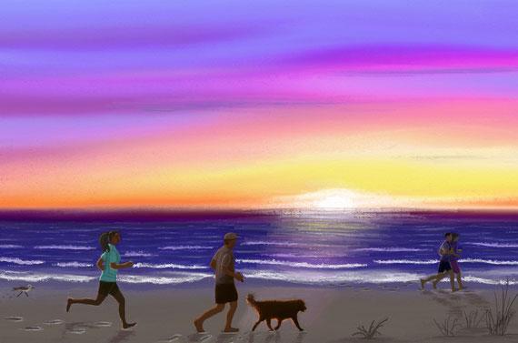Strandläufer, digital