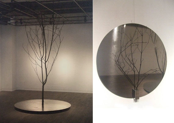Blood vessel       Iron/Wood   Ф1800×3000mm  2007          Blood vessel  Stainless steel/Wood     Ф700×300mm     2007