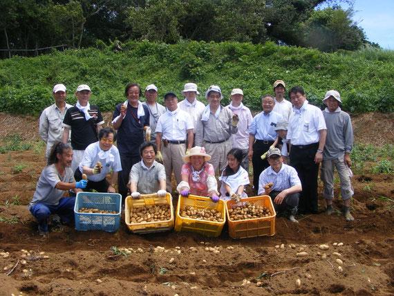 函南農場でイモ掘り