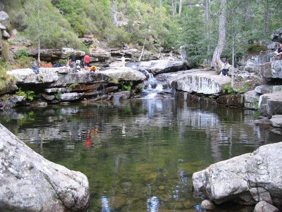 Vesperplatz bei den Badegumpen im Wald von Aitone