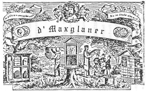 Imker Ortsgruppe Maxglan