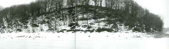 Холм на котором стоял замок.По верхней кромке видны остатки стен . фото автора 1990 г