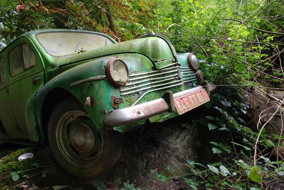 Im Gartenparadies eines Auto-Sammlers