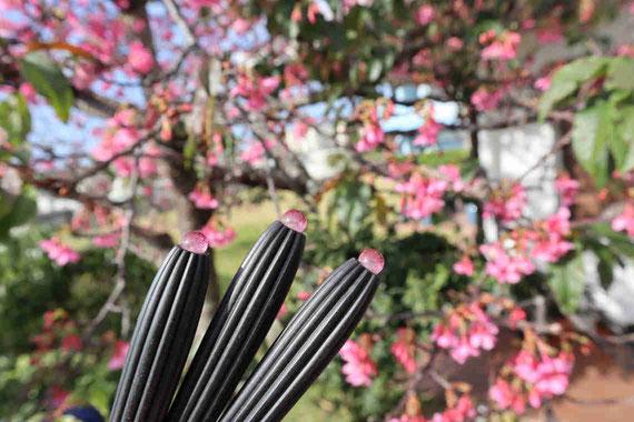 桜をモチーフにした琉球ガラスをカラクイに取り付けました。