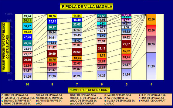 Blutlinie Pipiola