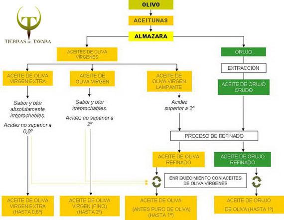 Clases de aceite de oliva