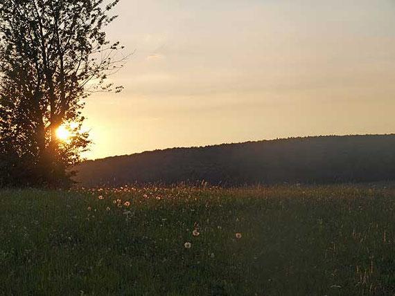 frieden in sich, mit sich und der natur, sonnenuntergang im junilicht