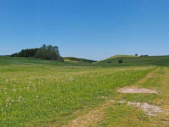 Das Rinnental im Sommer bei Sonnenbühl auf der Schwäbischen Alb