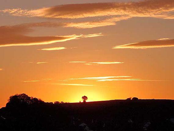 Sonnenaufgang über Sonnenbühl, der Himmel in Gelb-Rosa Licht getaucht