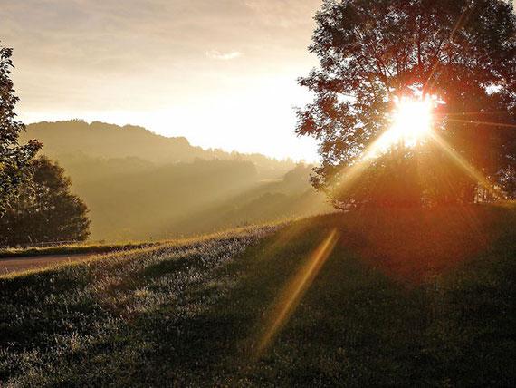 Morgennebel löst sich auf, die Nebelschwaden heben sich in Sonnenbühl schwäbische Alb