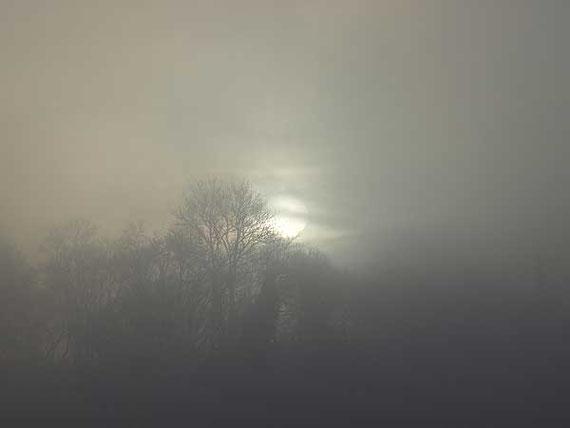 Nebeltag in der magischen Zeit zwischen 24. Dezember und 6. Januar
