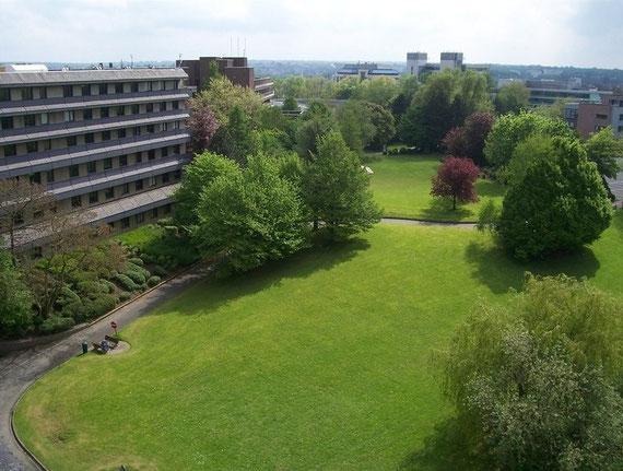 Lieu où se tiendra le bâtiment des Sciences Appliquées