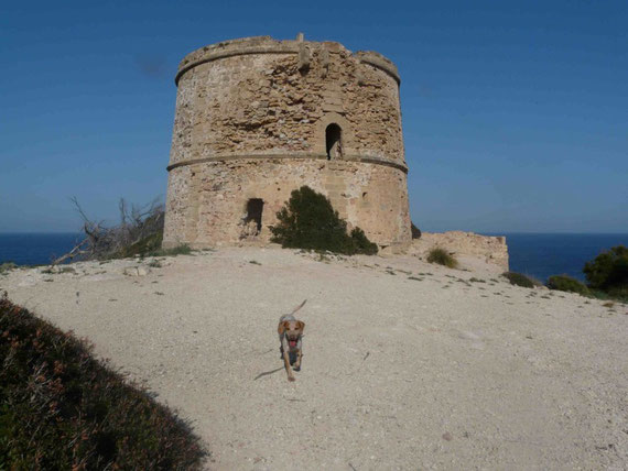 Torre d'Albarca