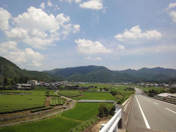 松阪市飯南町にある、でんめいふぁーむは、身近にある自然の力を借りて、野菜づくりをしています。