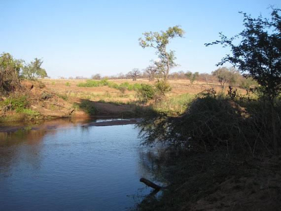 il Mutale e baobab in lontananza