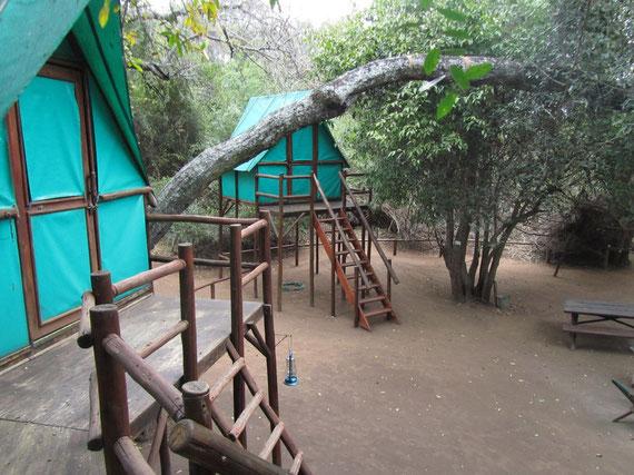 la piazzuola del rain tree