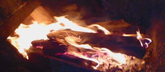 蛇も現れる…今回初めてまむし入りドリンクを飲んだ窯焚き