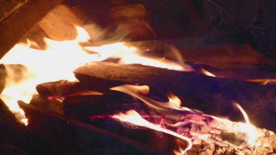 火の鳥も現れ始める…