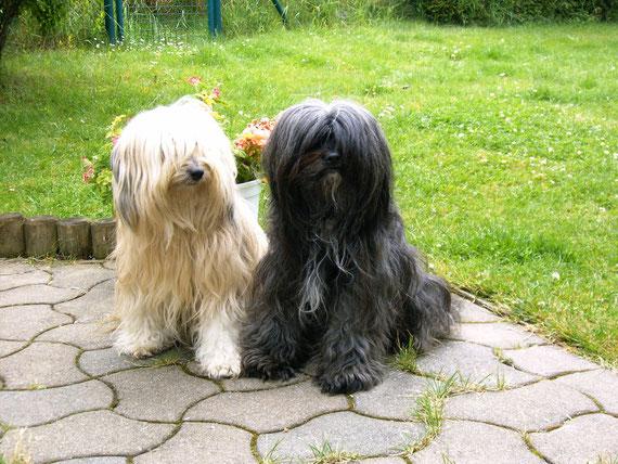 Alba und Tingri