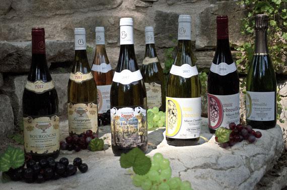 bourgogne, vins mâcon, bouteilles bourgogne