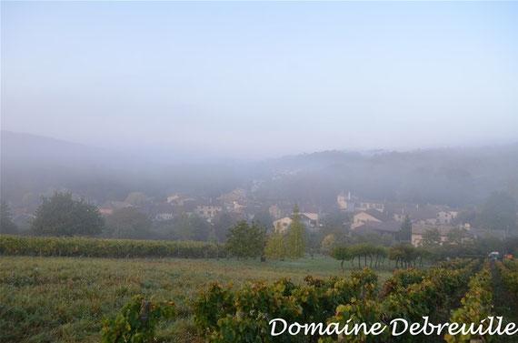 domaine debreuille, plottes, chardonnay, bourgogne blanc