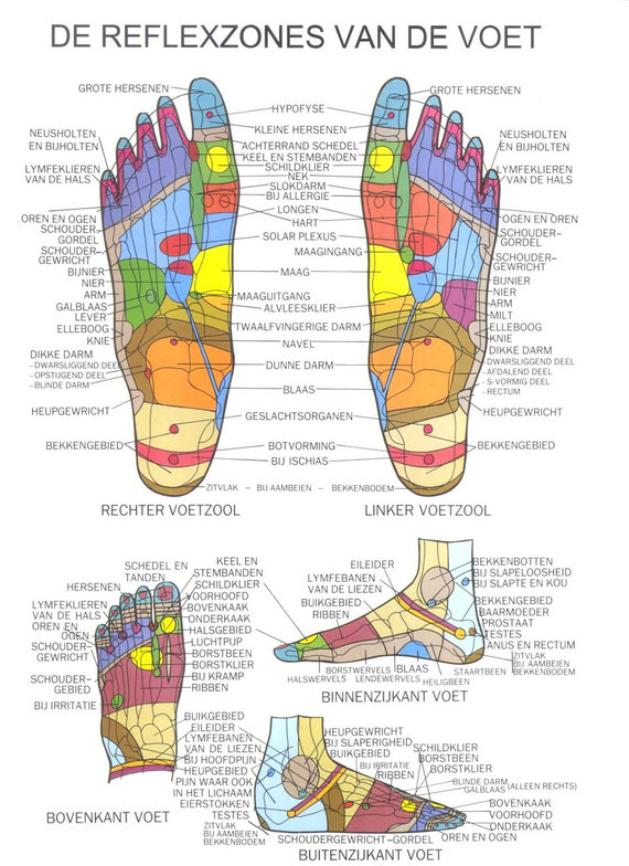 detox afslankpleisters, afslankpleisters, afslankringen, detox pleisters, detox voetpleisters,