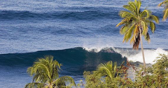 Surf, Rincon, Puerto Rico