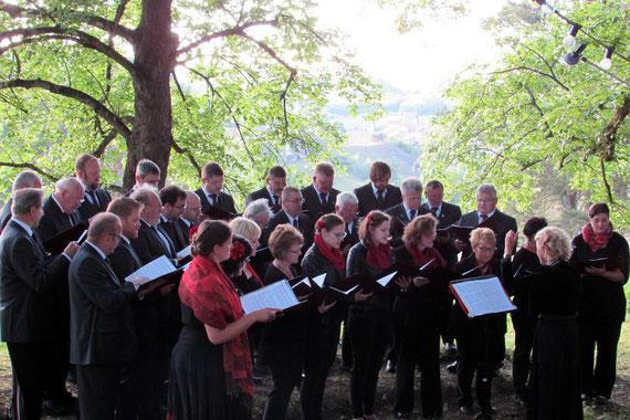 Gemischter Chor Gesangverein Alfeld - Serenade unter den Linden 2017