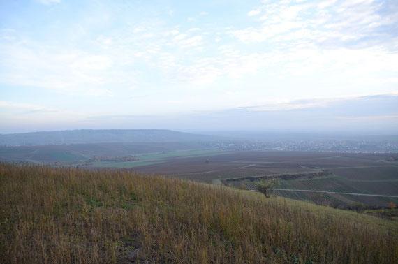 Horrweiler Weitblick für die zukünftigen Herausforderungen