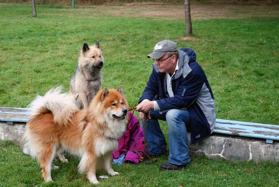 das Herrchen von Sammy erholt sich und die Hunde passen auf ihn auf.