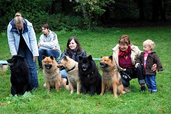 fünf Eurasier und drei Farbrichtungen: schwarz, rot, falb (Deno, Carla, Dela, Enni, Donna)