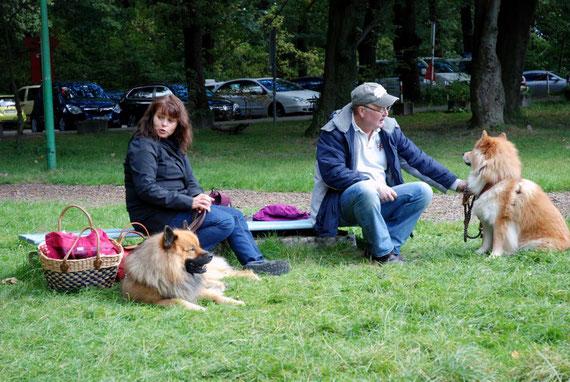 Was auf Facebook begann, führt Dschingis, Sammy und Greta im Naturfreundehaus zusammen.