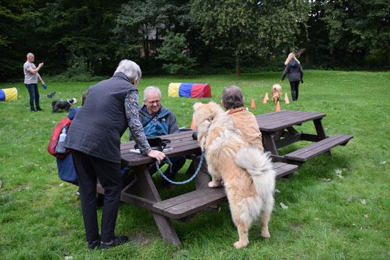 Mitunter gibt es auch Unterbrechungen, wo man sich über die Vorführungen unterhält und der eine oder andere Hund sich bei den eigenen Leuten umsieht.