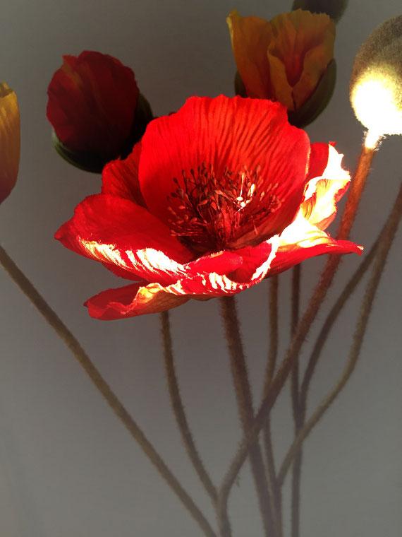 Blume aus Stoff, Sonne echt - 5.12.2016