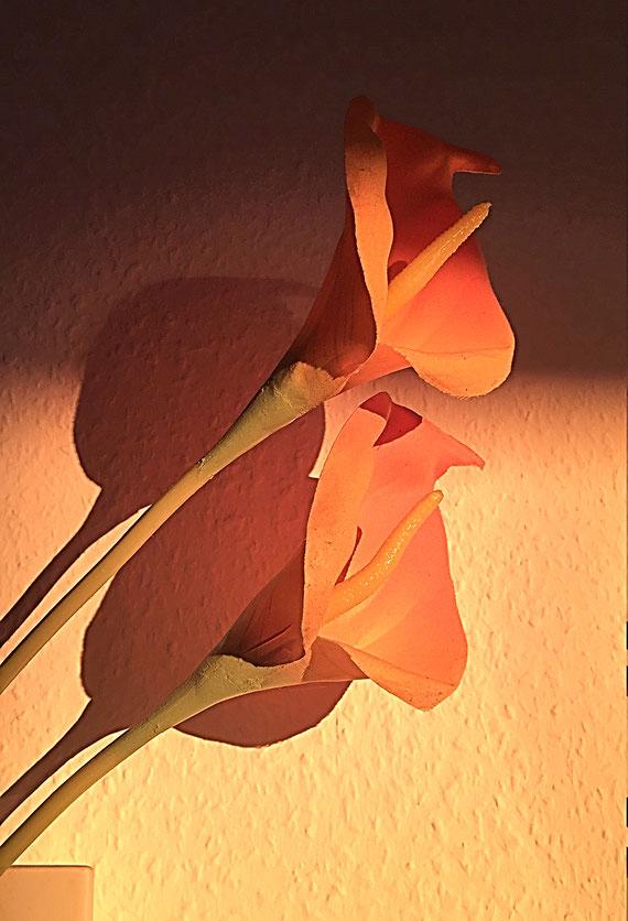 das ist Kunst und das kann nicht weg - echte Stoffblumen auf Rauhfasertapete