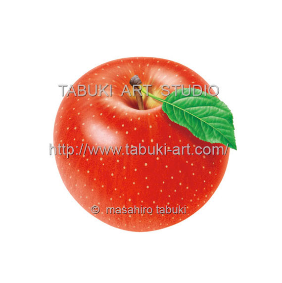リンゴ丸 RD10617