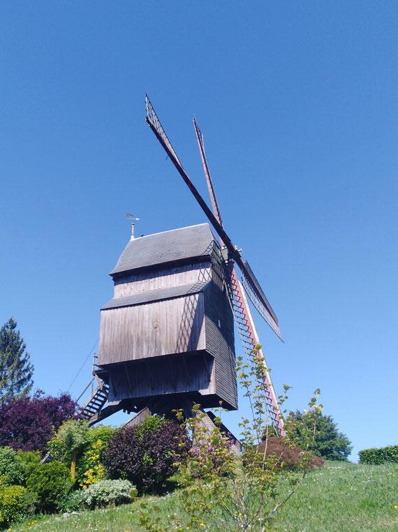 Moulin du Cat Sauvage, ELLEZELLES